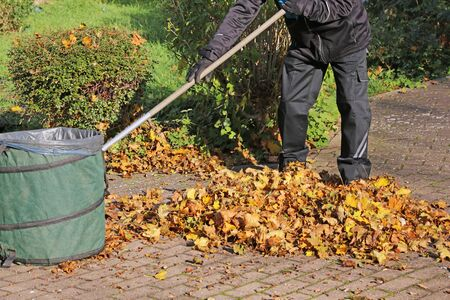Worker clear leaves in autumn
