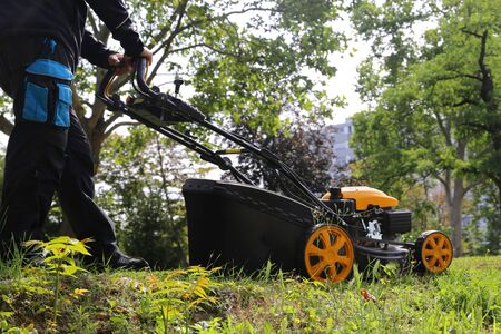Cutting and trimming the lawn