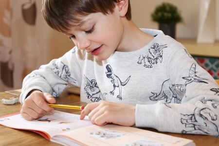 Primary school child at home schooling