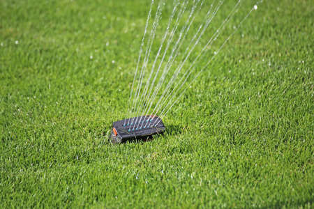 Garden irrigation with well-cared lawn