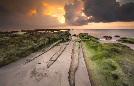 sunset seascape with rocks covered by green moss. Photo taken at Kudat, Sabah Malaysia.