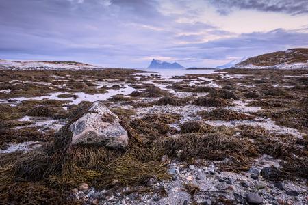 Am frühen Morgen Foto von einer malerischen Seelandschaft mit einem Felsen im Vordergrund in Sommaroy, Norwegen