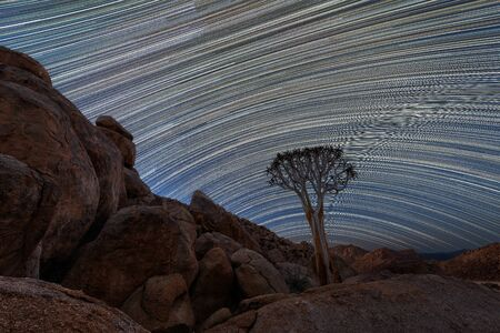 A beautiful night sky photograph of a Quiver Tree framed by rocky mountains, with star trails across the sky and behind the tree, taken in the Richtersveld National Park, South Africa.
