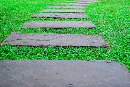 Rough green grasses and stone slabs decorated on walkway.