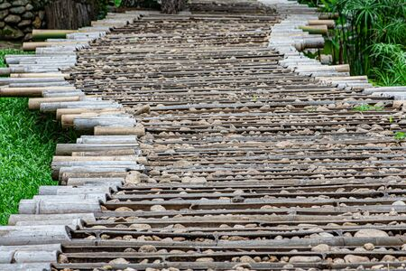 The sun shines on the stone pathway on the bamboo in the garden. Stok Fotoğraf