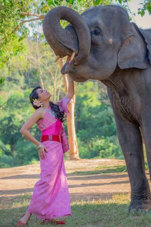 Beautiful thai women wearing traditional thai clothes standing on an elephant in nature park thailand, woman concept.