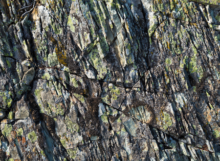 Stone texture with moss. Stone multi-layer cracks and lichen on the surface. 写真素材