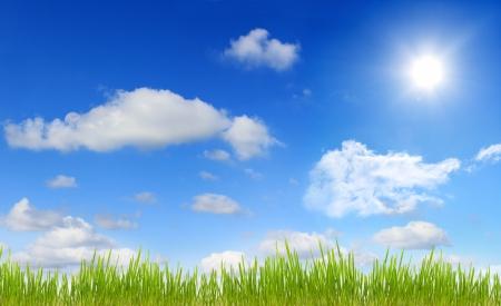 Panorama of sky sun and grass Stock Photo - 13639042
