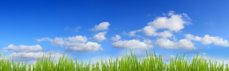 cloud scape: Sky and grass panorama banner Stock Photo
