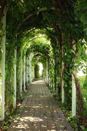 Gazebo in the garden green valley photo