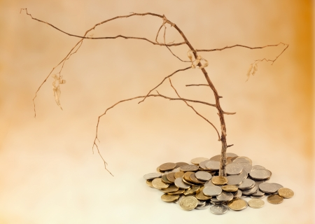 global crisis:  bad investment and withered tree with money Stock Photo