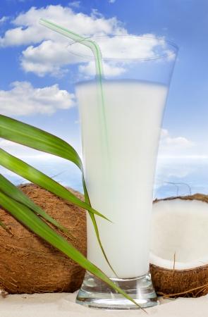Coconut malibu drink on the beach photo