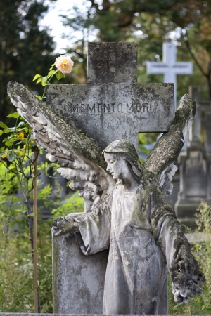 angel headstone:  Angel statue on cemetery Editorial