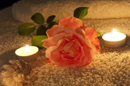 rose candles and shell in night spa abstract Stock Photo