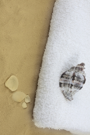 Shell with towel on beach abstract background photo