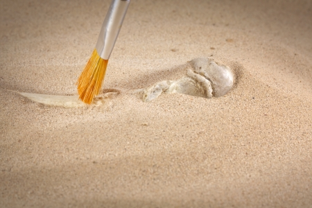 forensics:  Archeology and forensics bones in sand Stock Photo