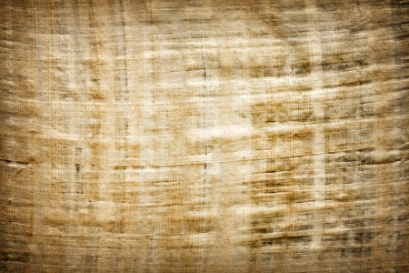 parchment texture: Old vintage blank Egyptian papyrus background texture