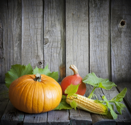 Autumn pumpkins and corn vintage still life photo