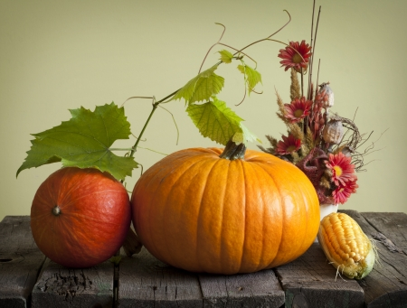 gourds: Autumn pumpkins and corn vintage still life