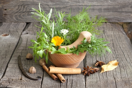Herbs and spices in mortar on wooden boards Stock Photo - 15332996