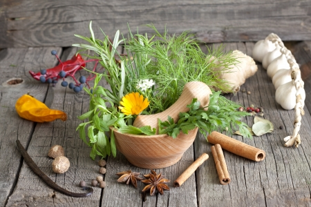 Herbs and spices in mortar on wooden boards Stock Photo - 15332992