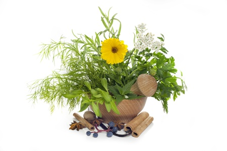 Herbs and spices in mortar on white background photo