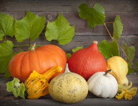 Autumn pumpkins on wooden boards still life photo