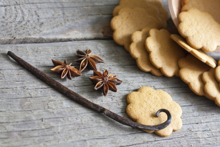 Gingerbread cookies and spices  photo