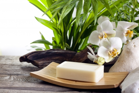 wooden aromatherapy: Spa soap and white orchids on stone against palm
