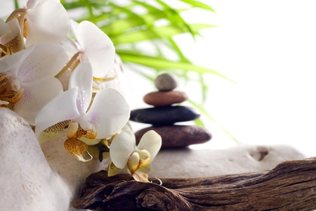 Spa concept with orchid and stones on white background photo