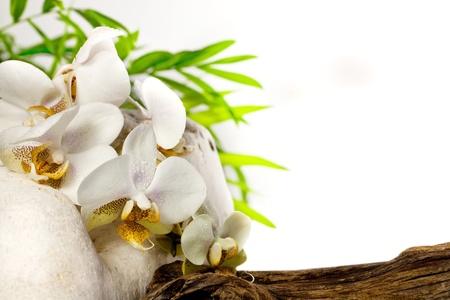 Spa concept met orchidee en stenen op witte achtergrond