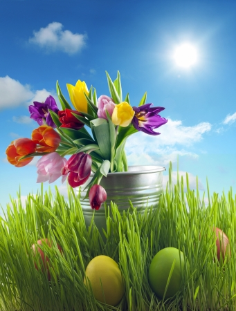 Easter eggs and flowers on meadow with sky abstract concept photo