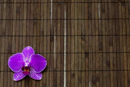 Orchid on bamboo mat spa cosmetic abstract vintage background photo