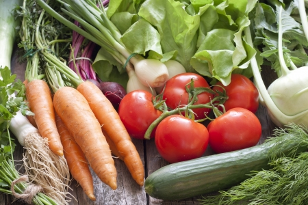 Many fresh spring organic vegetables on planks gardening concept