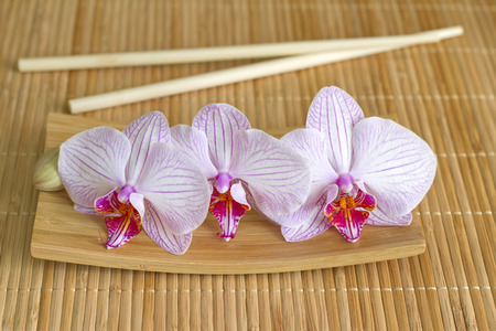 Orchids on bamboo mat abstract asian food unique concept photo