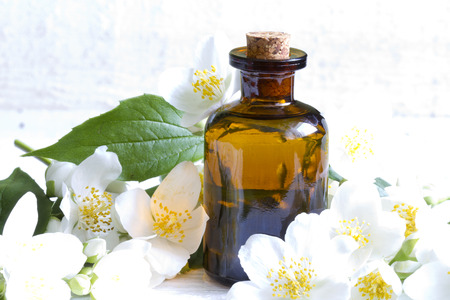 medicinal plants: Jasmine aromatherapy oil on white planks with flowers