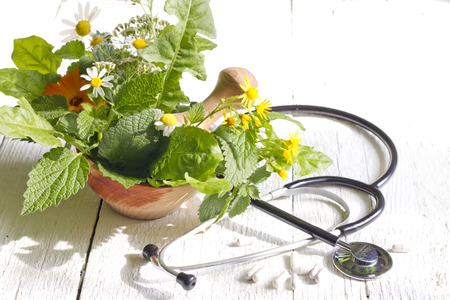 alternative therapies: Fresh herb and stethoscope alternative medicine concept Stock Photo