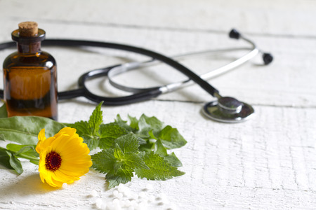 green herbs: Alternative medicine herbs and stethoscope concept