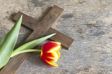 jesus christ crown of thorns: Spring tulip and cross abstract easter concept Stock Photo