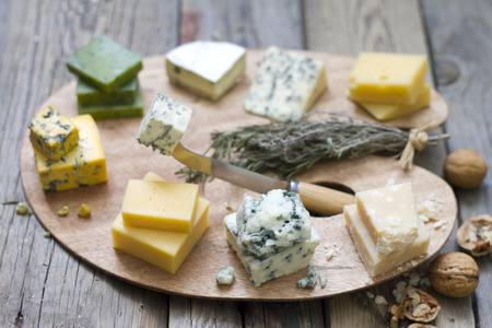 Various types of cheese on abstract vintage paint palette