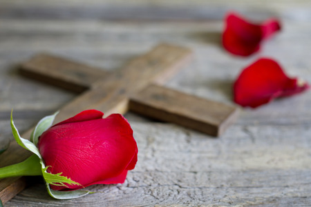 jesus rose: Cross and rose religion sign symbol abstract concept Stock Photo