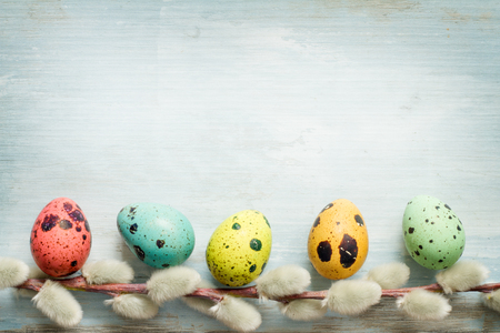 catkins: Easter eggs and catkins retro blue background