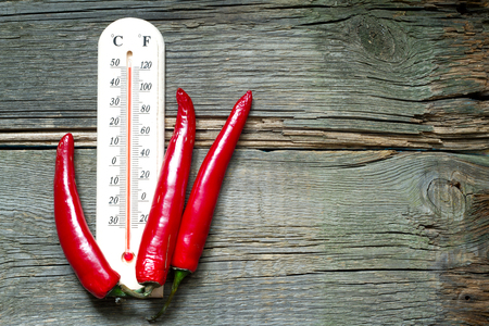 negocios comida: signo creativo caliente de la temperatura con un termómetro y frío Foto de archivo