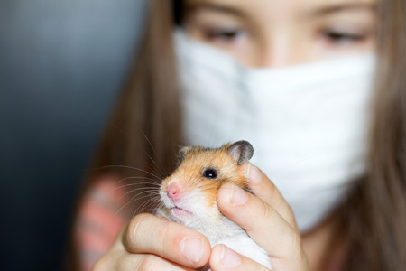 Girl with medical mask and hamster allergy concept photo