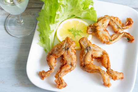 fried food: Fried frog legs on plate food concept
