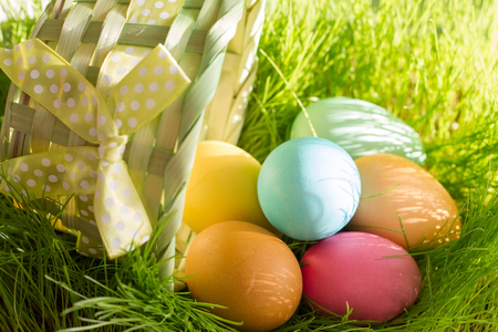 Easter colorful eggs in spring green grass in sunlight floral abstract Stock Photo