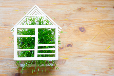 Wooden house and green grass abstract ecology construction concept Stockfoto