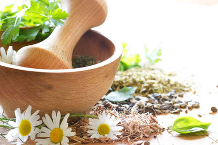 Fresh and dried herbs in wooden mortar