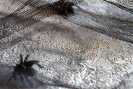 Dark empty concrete, spider, netting. Halloween background