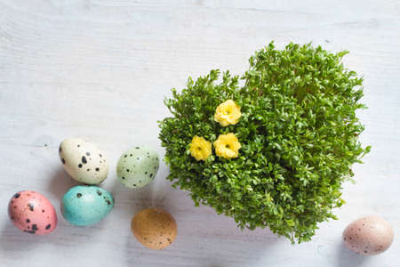 Easter heart-shaped watercress with colorful easter eggs. Easter background concept